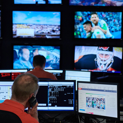 Data Gatekeepers Demand Increases as Sports Betting Grows